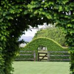 Fascinating Garden Gates and Fence Design Ideas 41